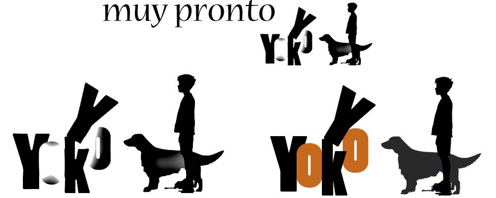 logotipo yokoyyo